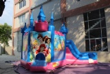 Disney princess party inflatable castle bouncy house