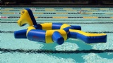 Air Floating inflatable Pool Water toys water bird