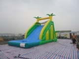 tropical inflatable water slide with pool