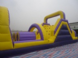 Forest with Animals Inflatable Slide Combo