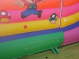 Super Mario and angry bird inflatable slide