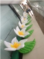 One flower Size:0.8m diameter
