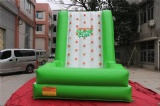 Interesting Green inflatable climbing wall for summer holidays